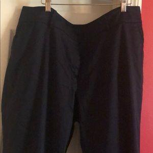 AUTH Ann Taylor Plus size Navy Blue Pants